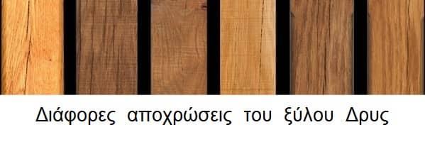 Ειδη ξύλου & χρήσεις του