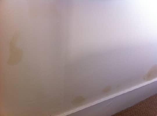 Το Χρώμα Τοίχου δεν Καλύπτει τα Στοκαρισμένα Σημεία