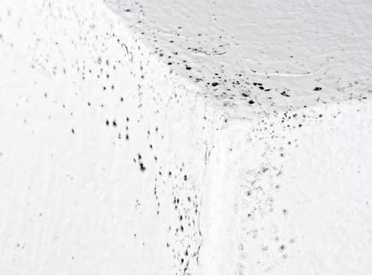 Μαυρες κηλιδες υγρασια στο ταβανι